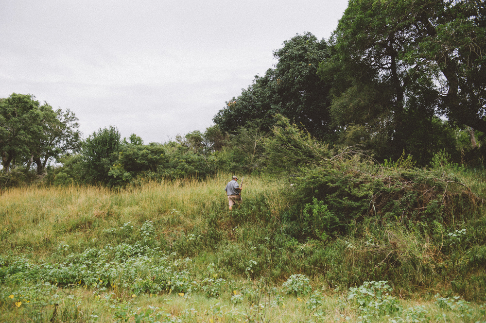 Lion Sands Kruger Park Fernwehosophy Elisaveta Schadrin-Esse (169).jpg