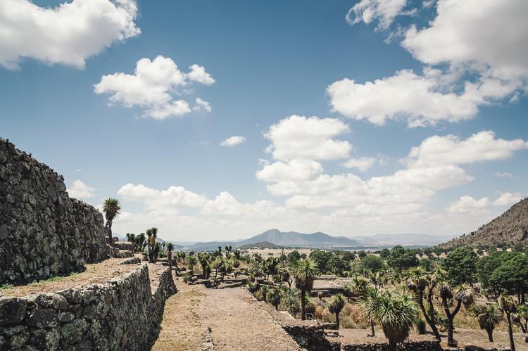 Hannah-Gatzweiler-Mexico-14.jpg