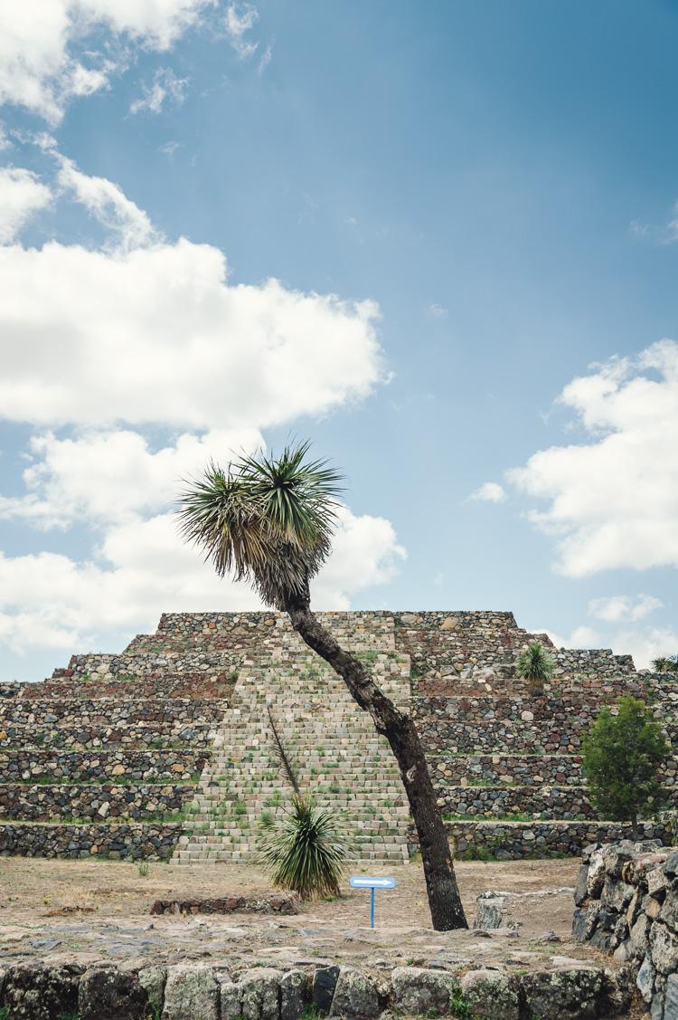 Hannah-Gatzweiler-Mexico-18.jpg