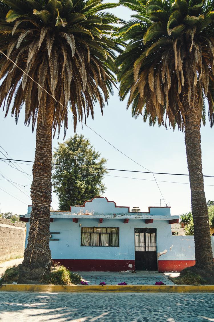 Hannah-Gatzweiler-Mexico-61.jpg