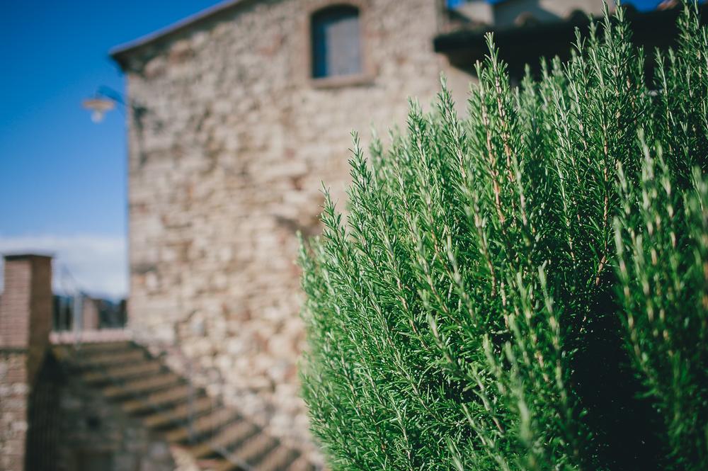 Tuscany Italy Stefan Lederer wedding photographer-34.jpg