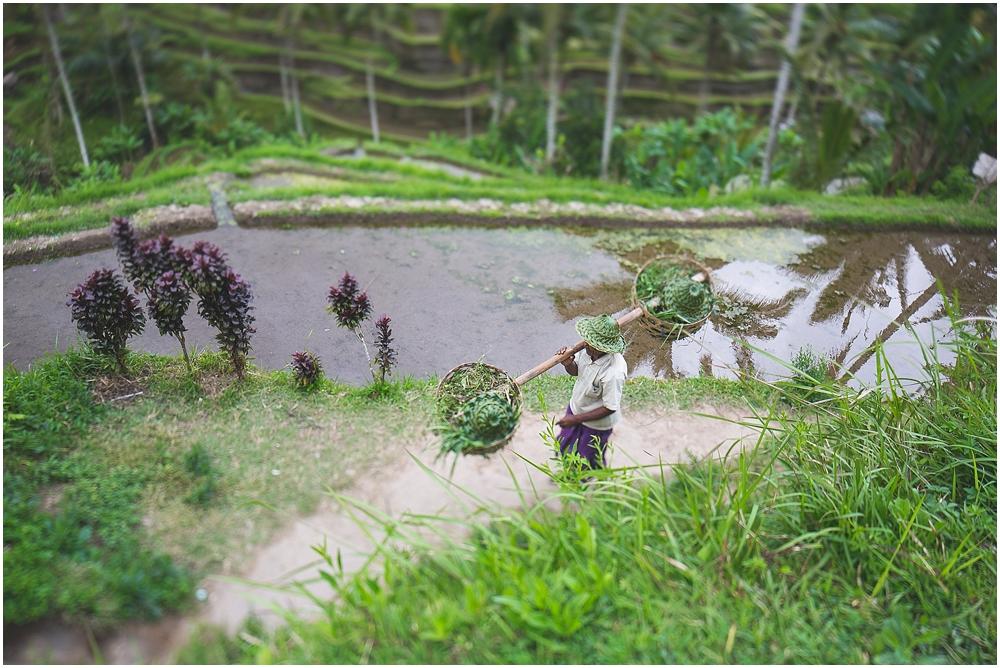 Java & Bali_018.jpg