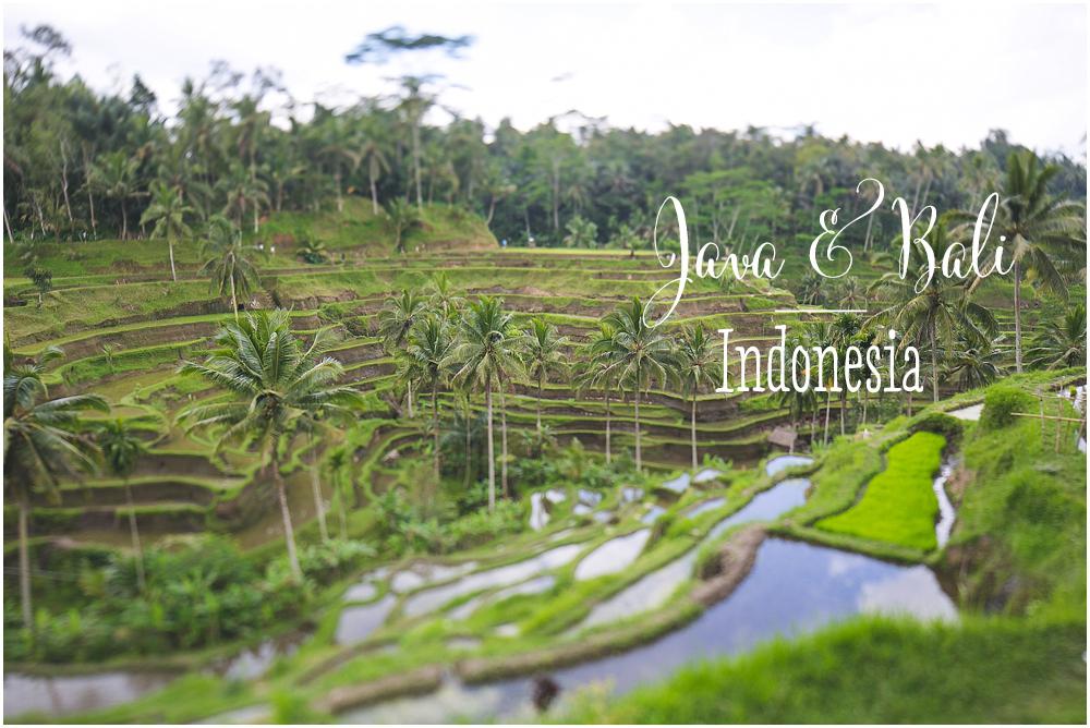 Travel Java & Bali Fernwehosophy Inga Amshoff.jpg