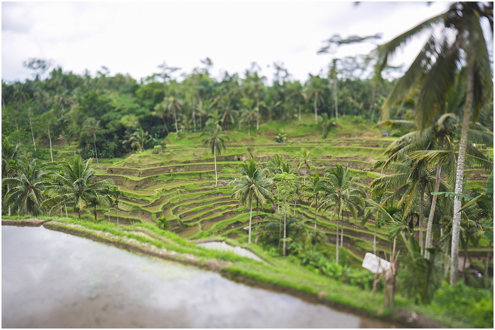 Java & Bali_019.jpg