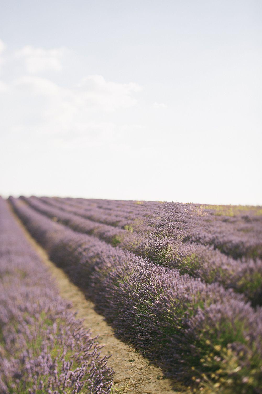 096 - FORMA - Provence - fernwehosophy.jpg