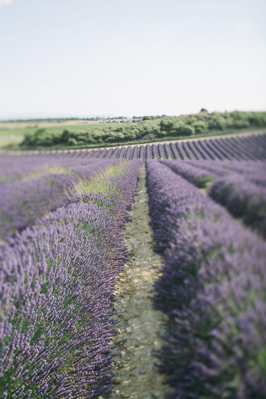 098 - FORMA - Provence - fernwehosophy.jpg