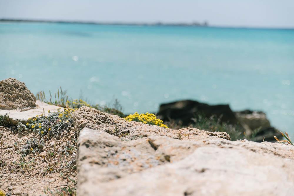 Mallorca-Insel-der-Stille-28.jpg