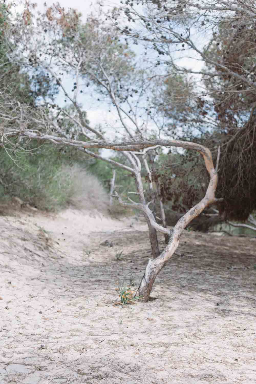 Mallorca-Insel-der-Stille-60.jpg