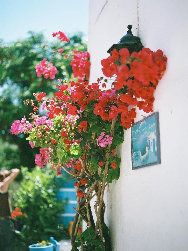 fotograf jenny blad_0031.jpg