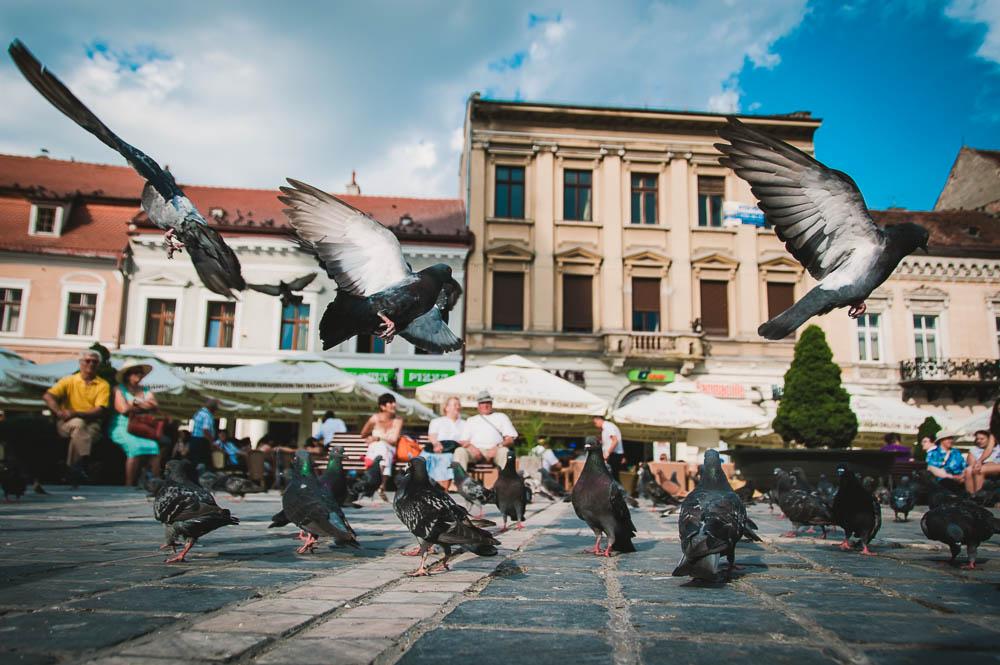 Rumänien-0310.jpg