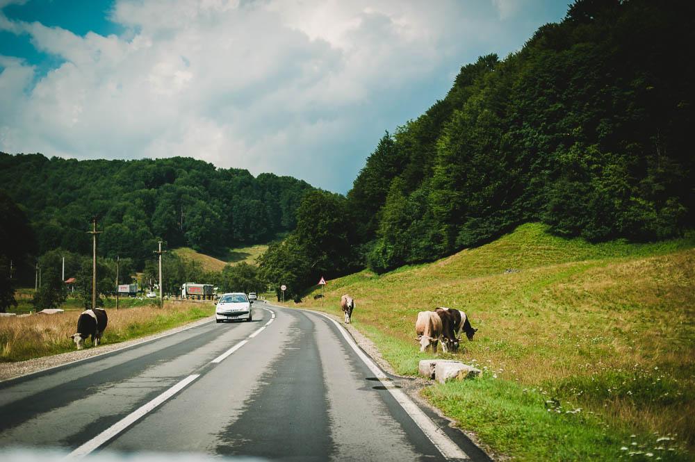 Rumänien-0252.jpg