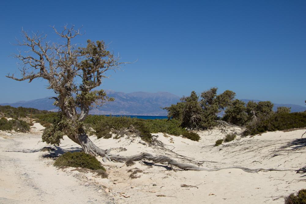 Kreta (25 von 59).jpg