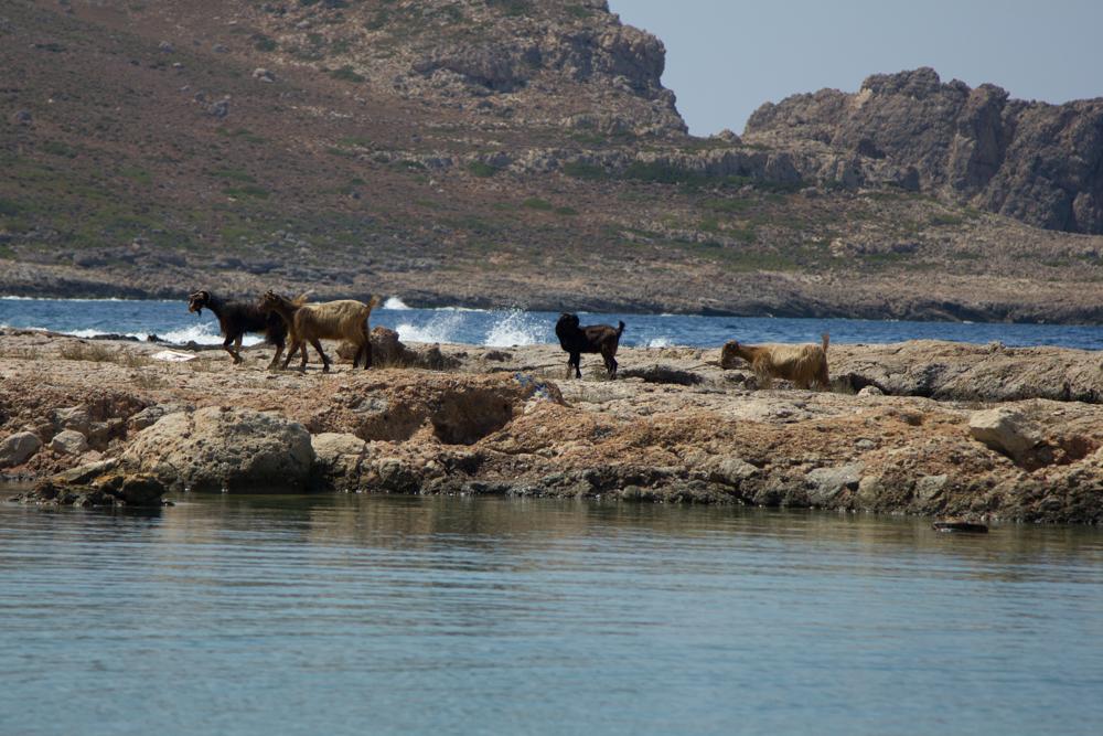 Kreta (58 von 59).jpg