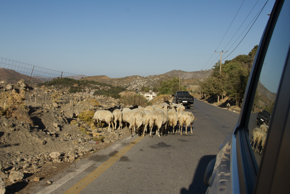Kreta (6 von 59).jpg