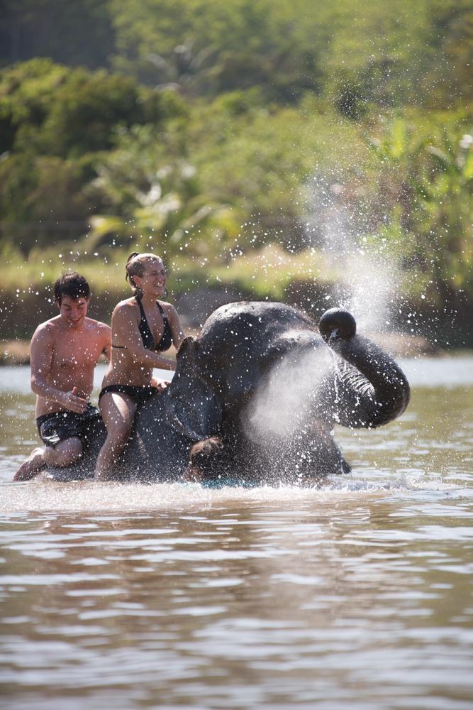 Nikki-Closser-Camodia-Thailand 66.jpg