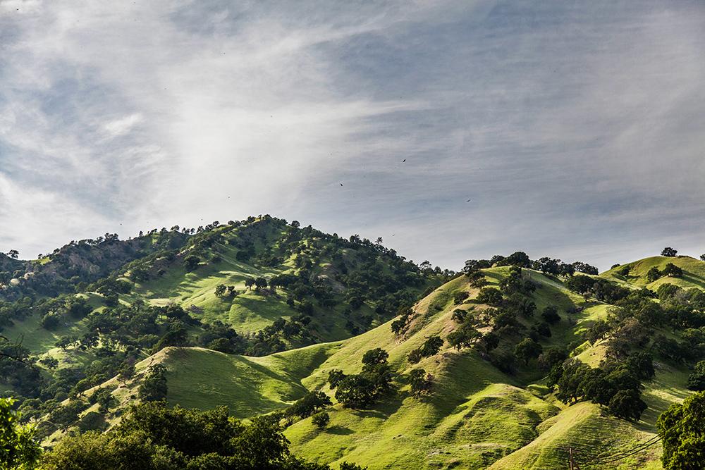 MareikeBöhmer-Kalifornien-51.jpg