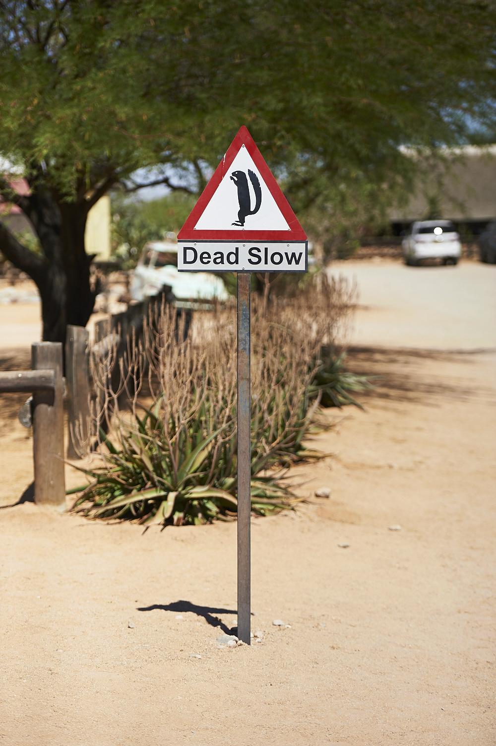 _DSC2483 fernwehosophy Namibia.jpg