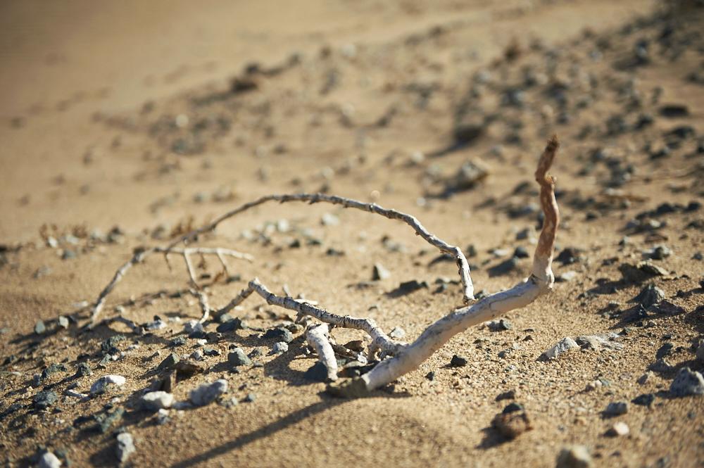 _DSC1136 fernwehosophy Namibia.jpg