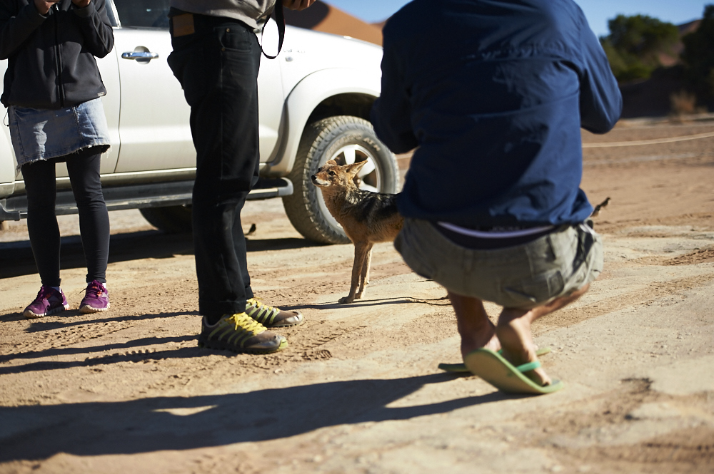 _DSC2339 fernwehosophy Namibia.jpg