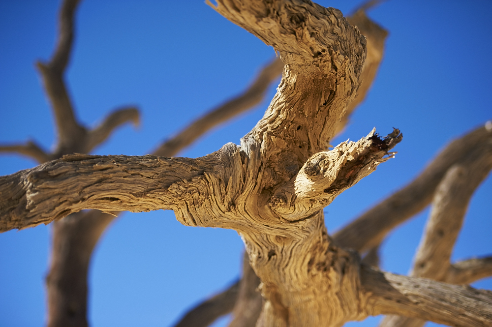 _DSC2416 fernwehosophy Namibia.jpg