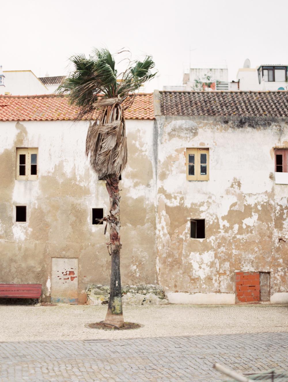 0117-Portugal.jpg