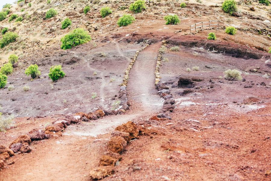 La Gomera 37.jpg