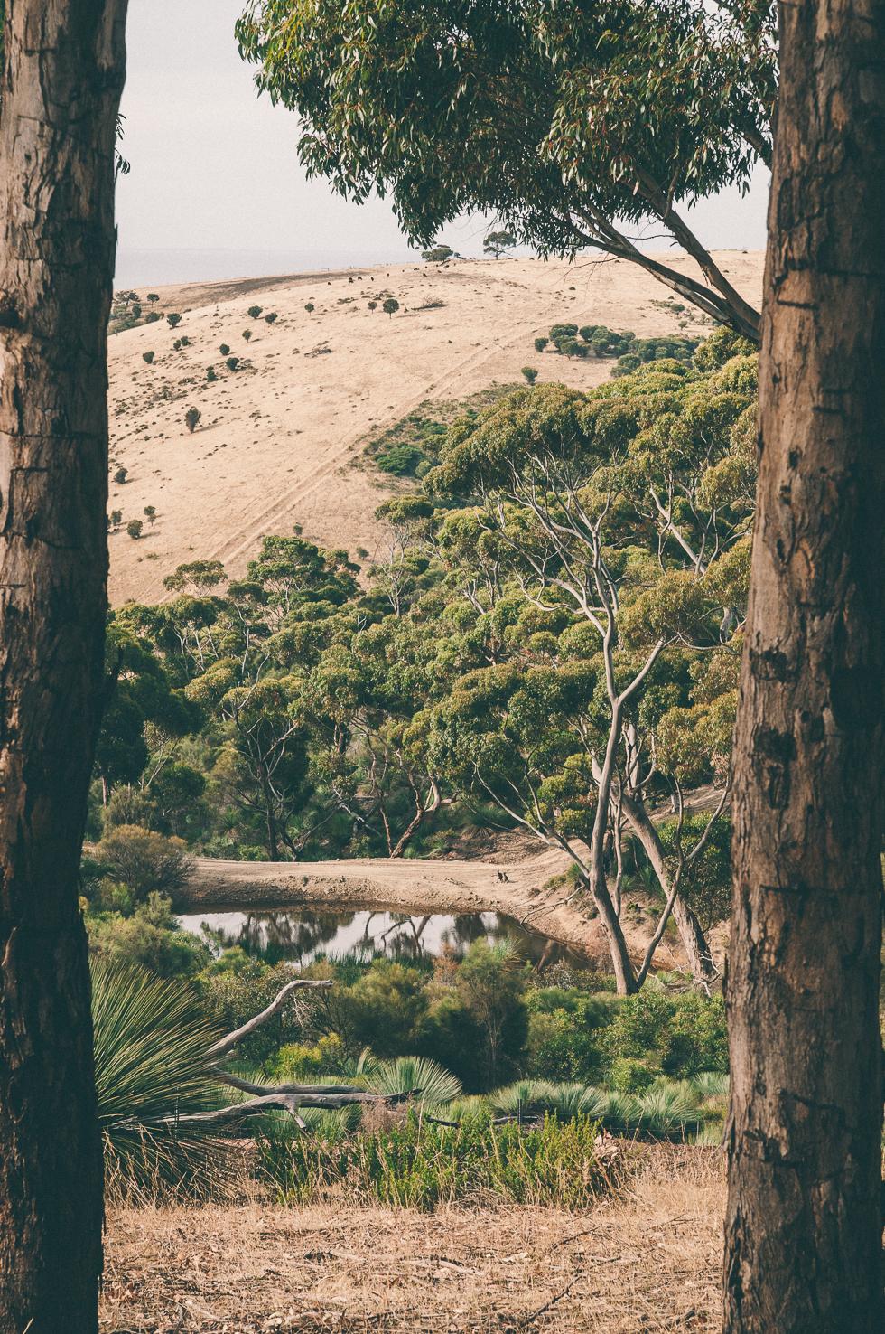 Westaustralien_Monika Ewa Kluz-70.jpg