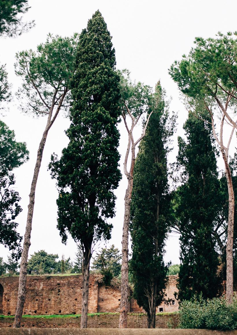 Roma-MarionandDaniel-Photography+Films-0035.jpg