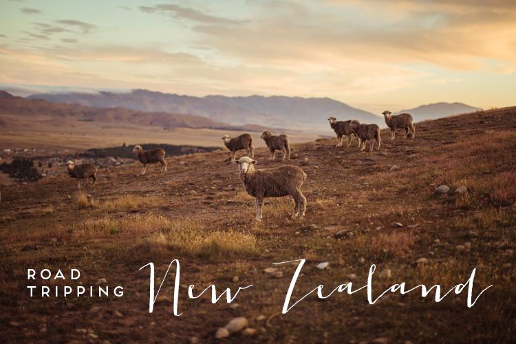 Neuseeland Roadtrip Fernweh New Zealand.jpg