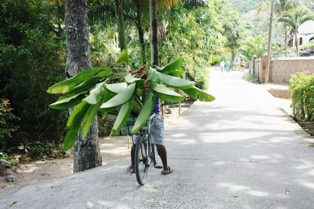 Seychellen Urlaub Indischer Ozean-5.jpg