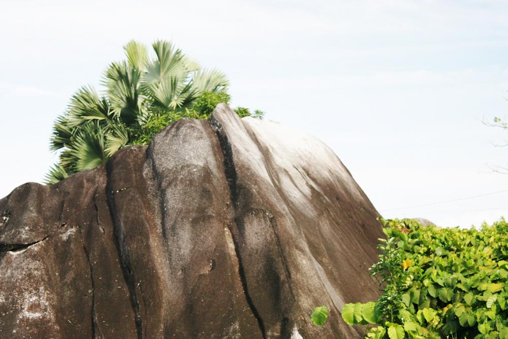 Seychellen Urlaub Indischer Ozean-17.jpg