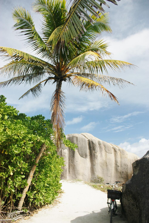 Seychellen Urlaub Indischer Ozean-27.jpg