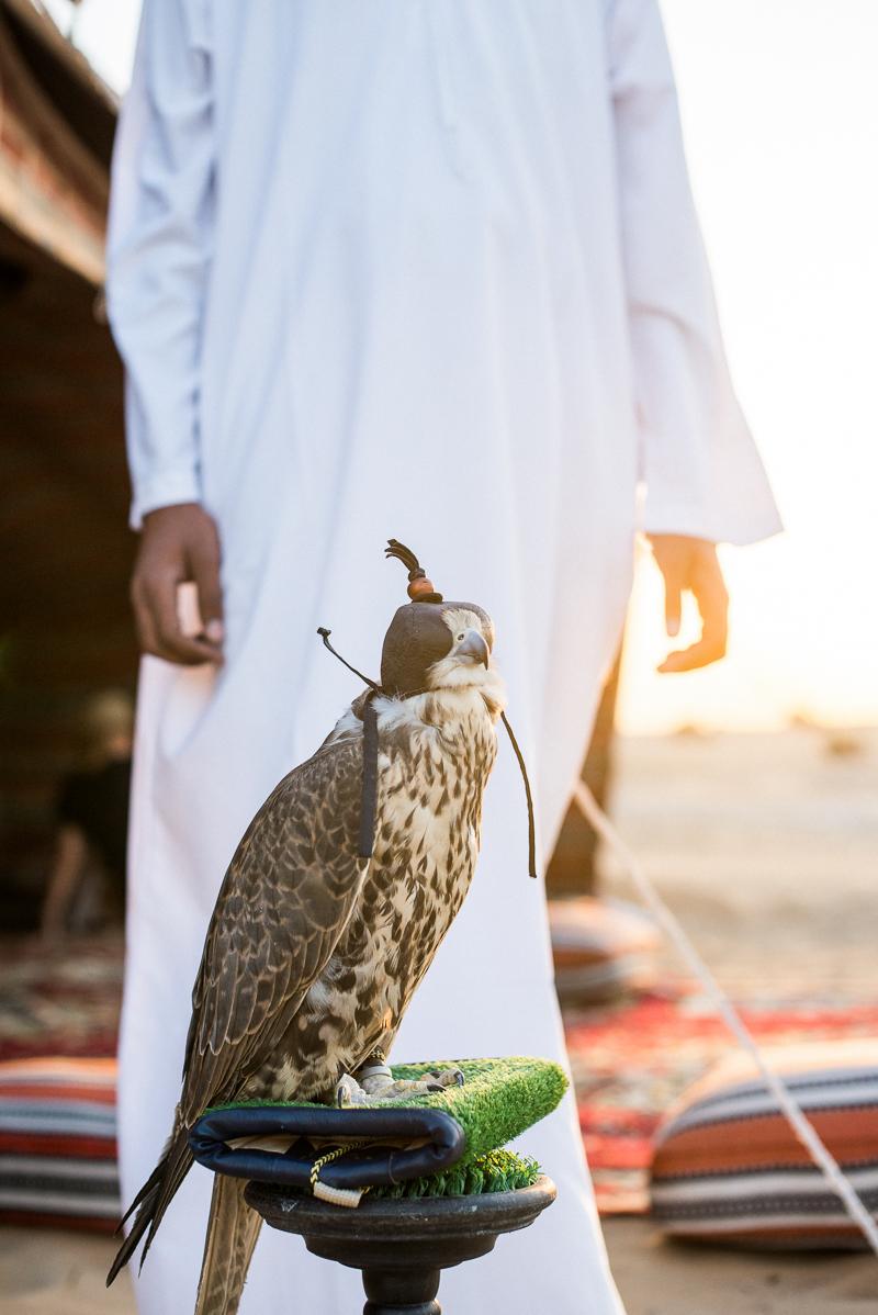 Dubai Abu Dhabi Reise Urlaub-16.jpg