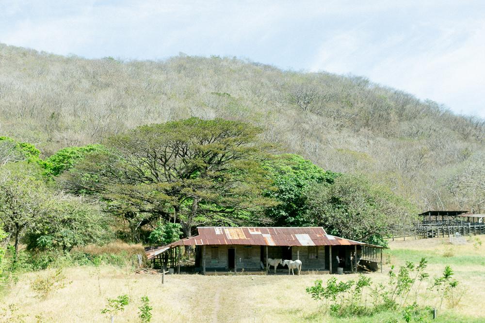 Costa Rica Lateinamerika Reise-17.jpg