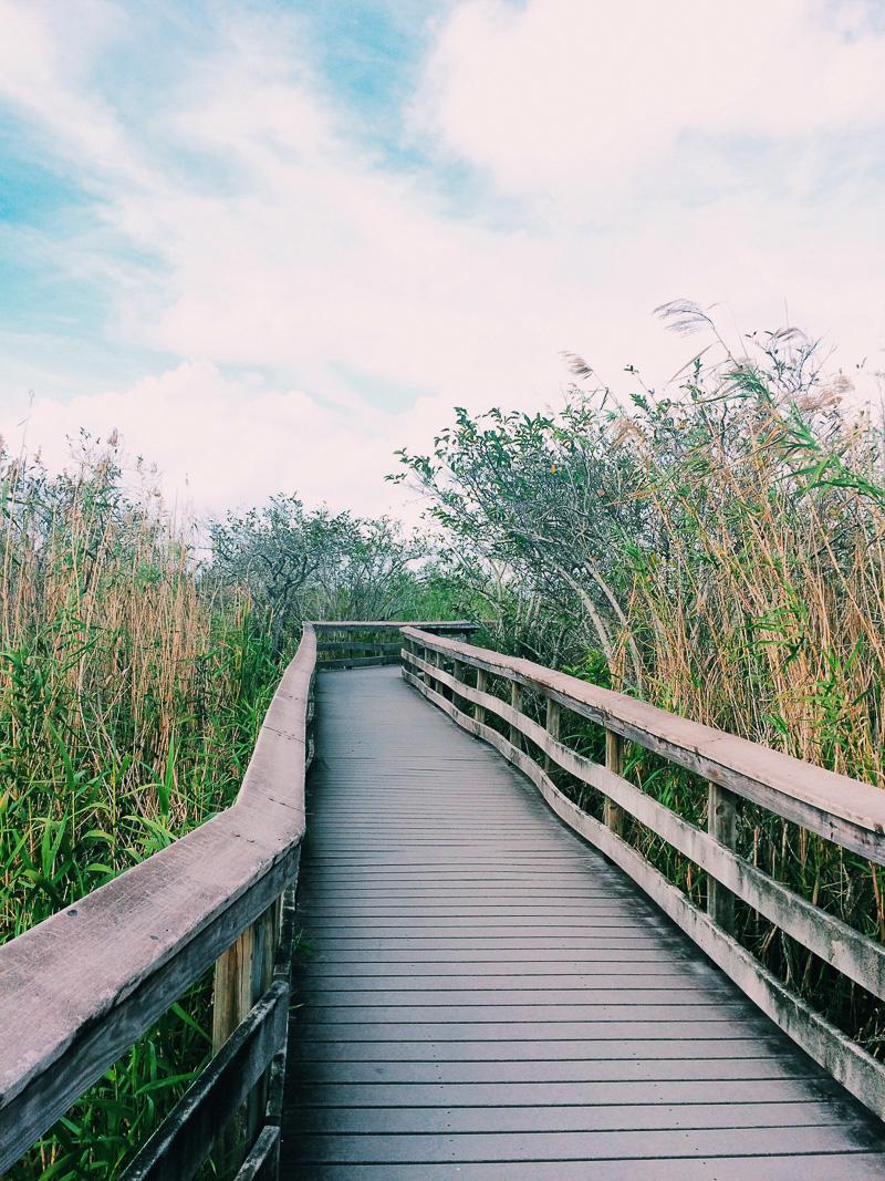 Miami Urlaub in Florida-15.jpg