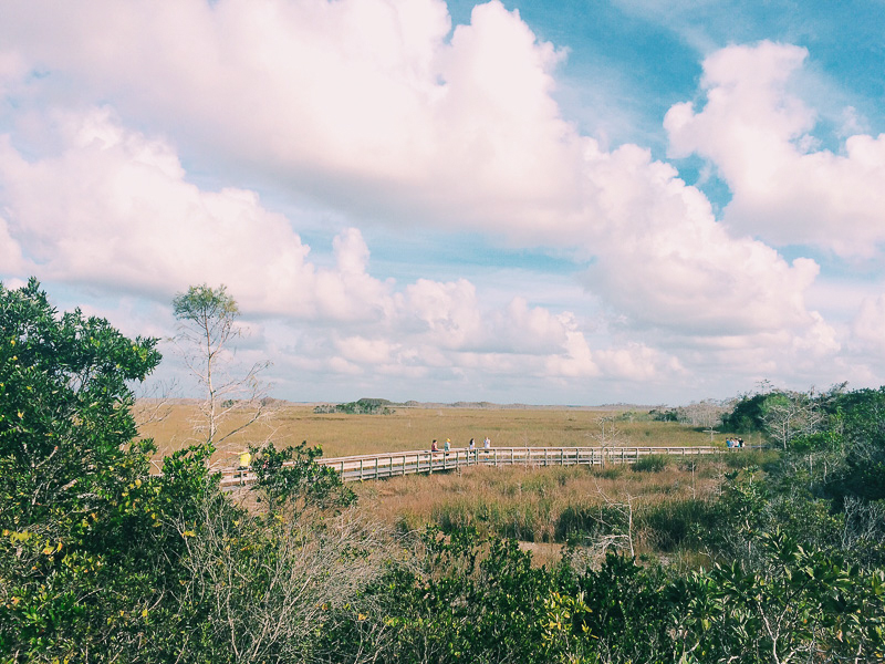 Miami Urlaub in Florida-18.jpg