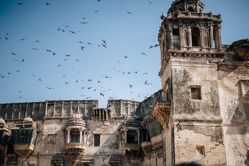 Gujarat Indien Reise-19.jpg