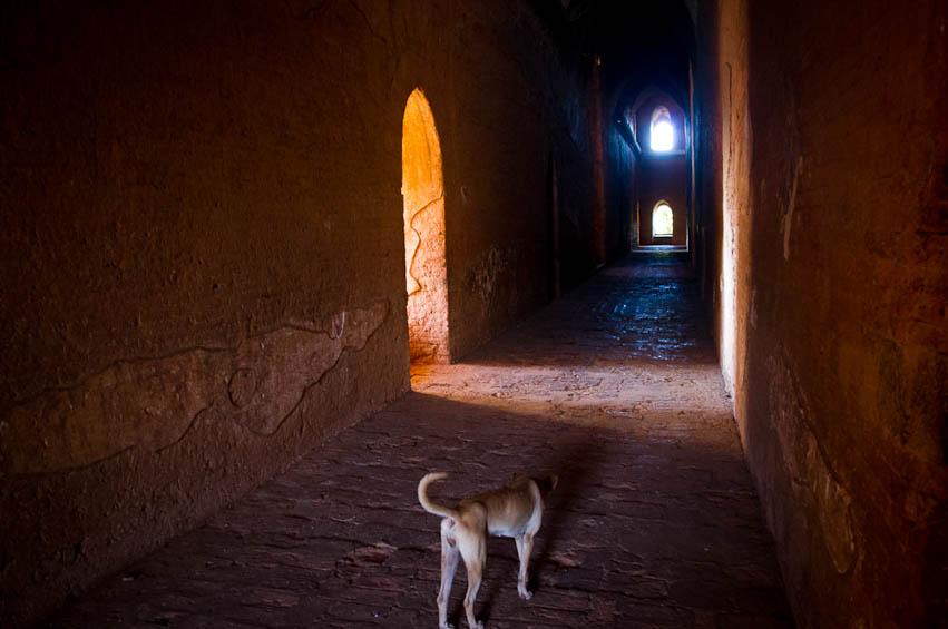 Myanmar-Steffen-Moeller-Fernwehosophy-Backpacking-Rreiseinspiration-Reisefotografen Kollektiv-36.jpg