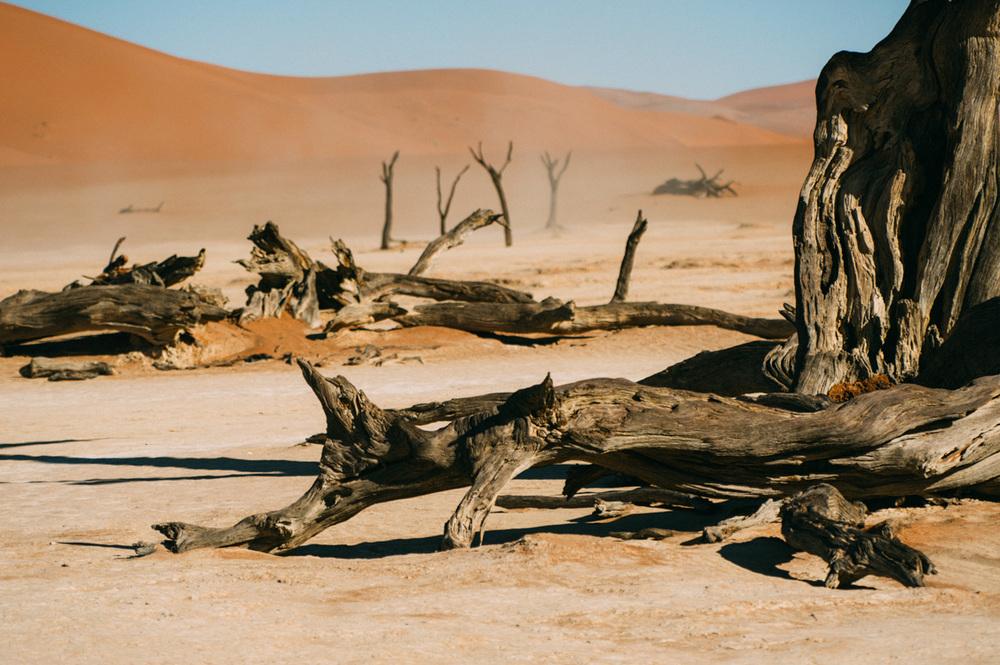 Fernwehosophy-Roadtrip-Namibia-Sossusvlei-Elisaveta-Schadrinesse (138 von 222).jpg