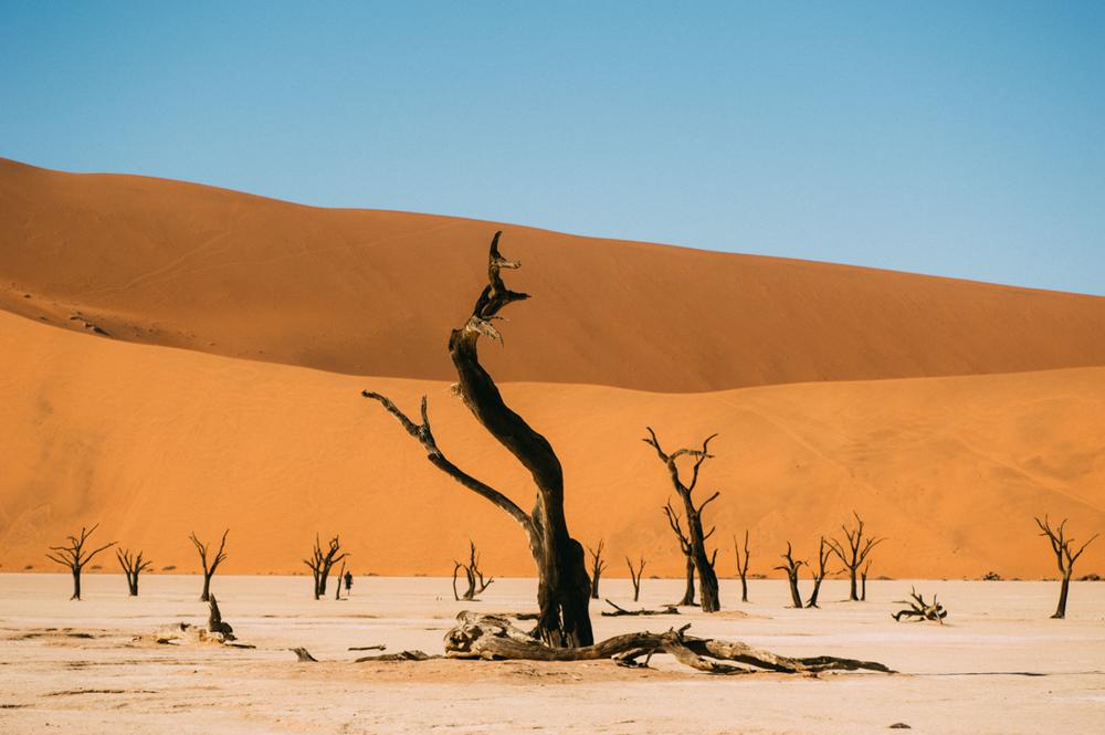 Fernwehosophy-Roadtrip-Namibia-Sossusvlei-Elisaveta-Schadrinesse (140 von 222).jpg