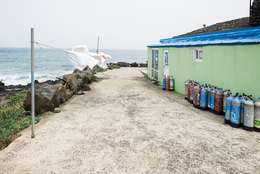 Reise_Südkorea_Travel_South_Korea_The_Fernweh_Collective (18 von 75).jpg