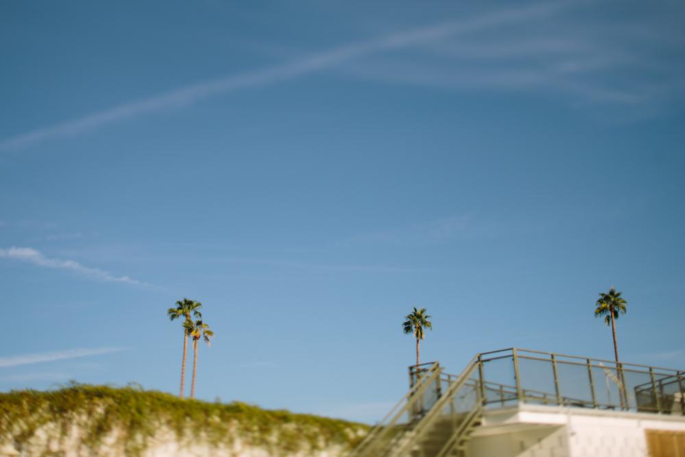 Kalifornien_Palm_Springs_Fernwehosophy_The_Fernweh_Collective (11 von 24).jpg