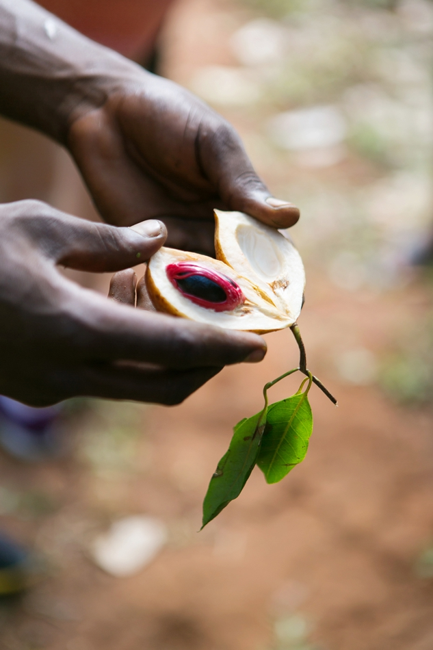 Natelee_Cocks_Nungwi_Zanzibar_33.JPG