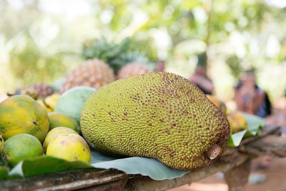 Natelee_Cocks_Nungwi_Zanzibar_35.JPG
