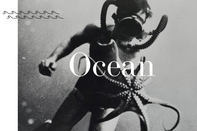 Ocean-Lovers.png