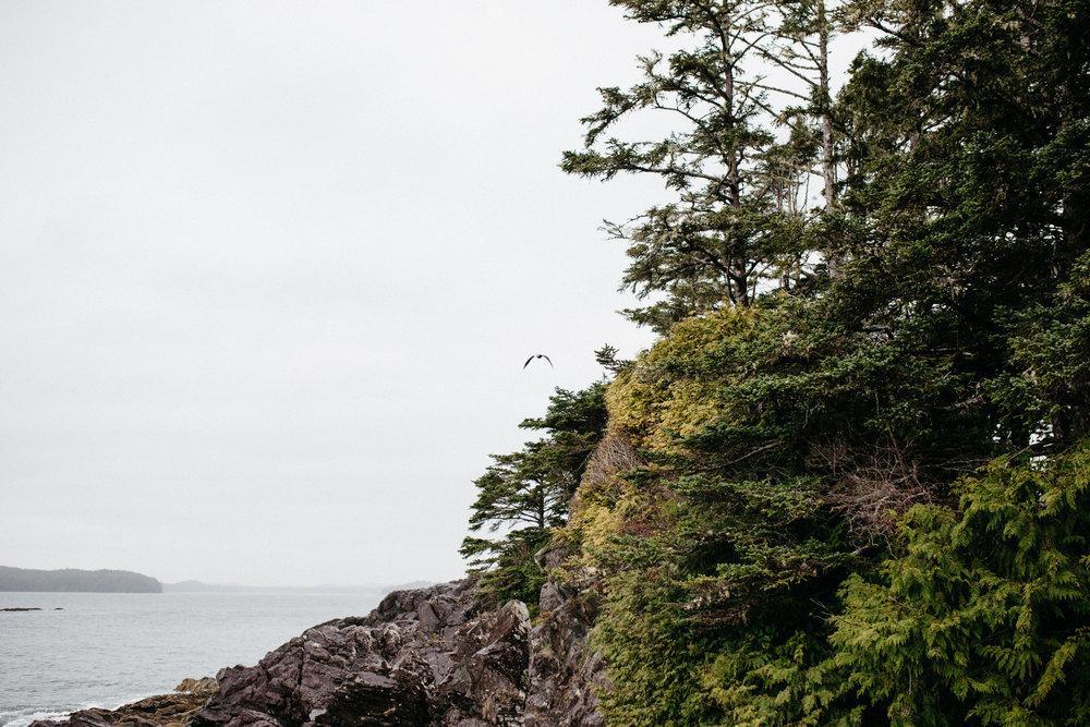 Vancouver Island (c)Kerstin Weidinger-18.jpg