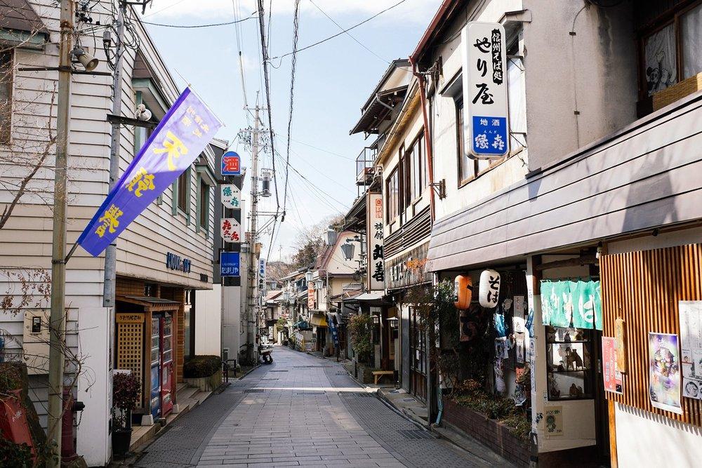 Yudanaka Japan 21.jpg