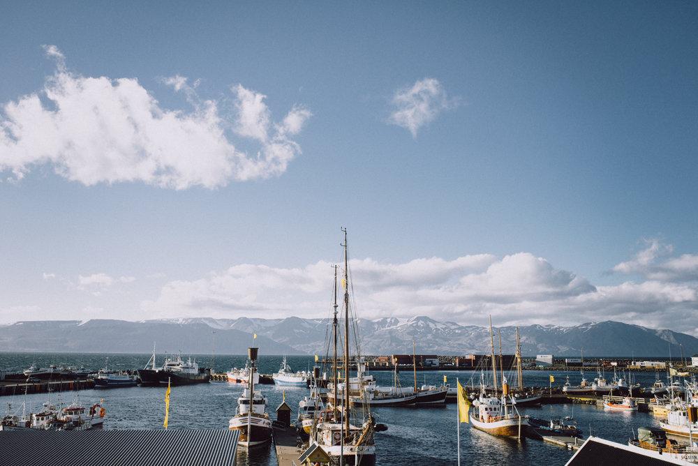 Tu-Nguyen-Wedding-Photographer-Iceland-Trip-15.jpg