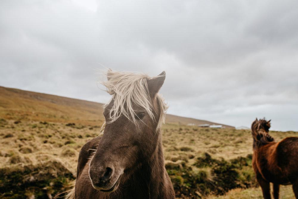 Tu-Nguyen-Wedding-Photographer-Iceland-Trip-13.jpg