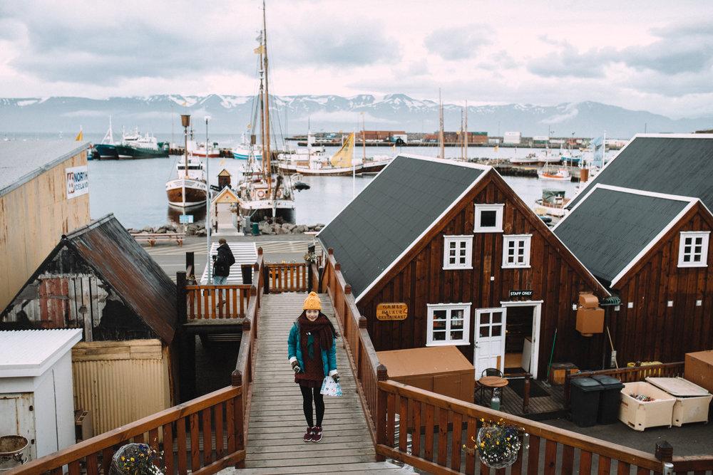 Tu-Nguyen-Wedding-Photographer-Iceland-Trip-24b.jpg